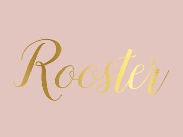 Rooster Dansstudio Linda
